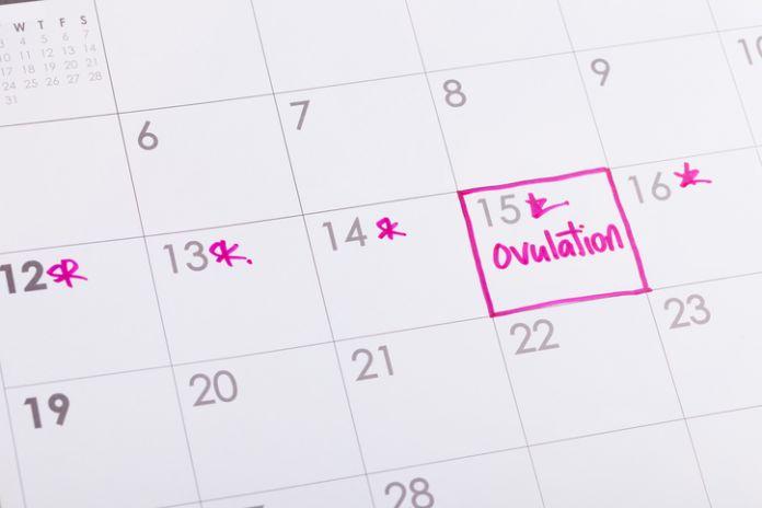 Dia de ovulación.