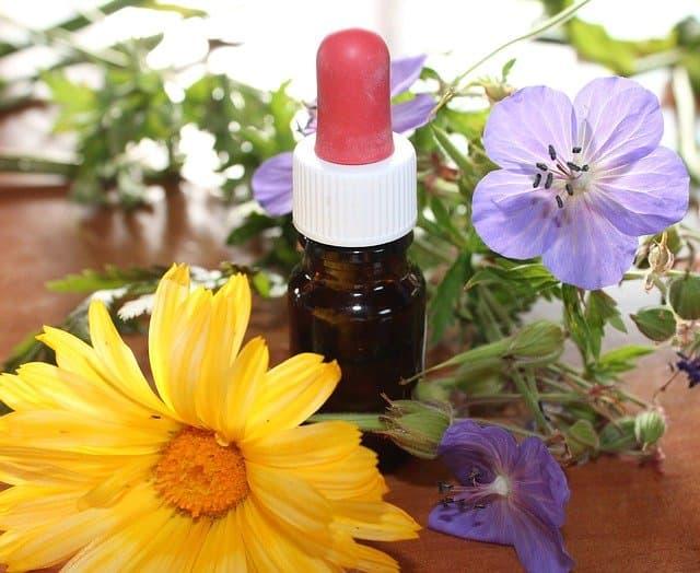 proceso de la homeopatía